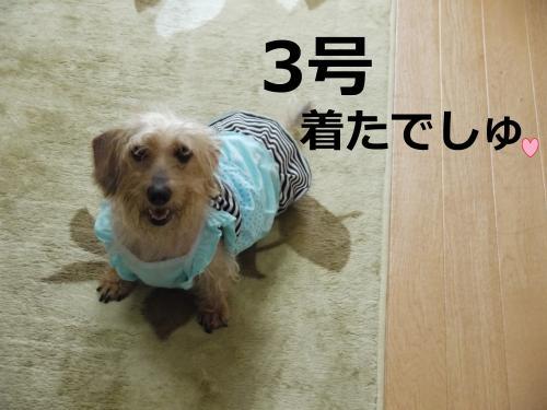 164+-+繧ウ繝斐・_convert_20110905084636