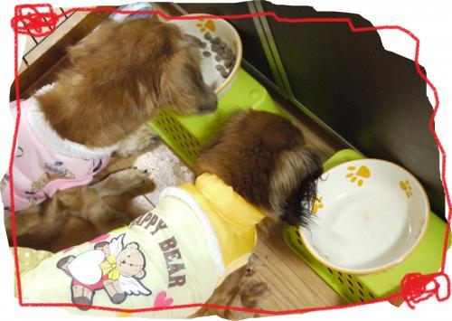 136+-+繧ウ繝斐・_convert_20111213004429 2011/12/13