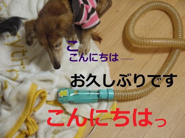 001+-+繧ウ繝斐・_convert_20111226161441 2011/12/26
