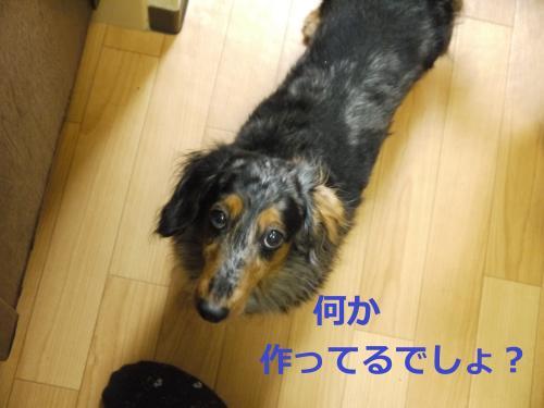 020+-+繧ウ繝斐・_convert_20120124104454 2012/01/24
