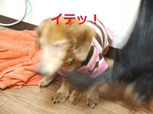 058+-+繧ウ繝斐・_convert_20120218014523 2012/02/18