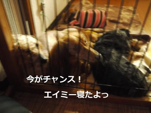 080+-+繧ウ繝斐・_convert_20120218032742 2012/2/18