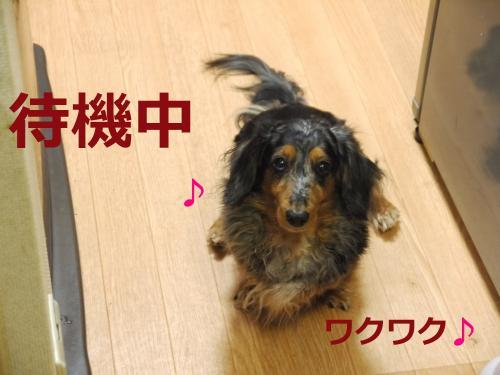 057+-+繧ウ繝斐・_convert_20120221165603 2012/02/21