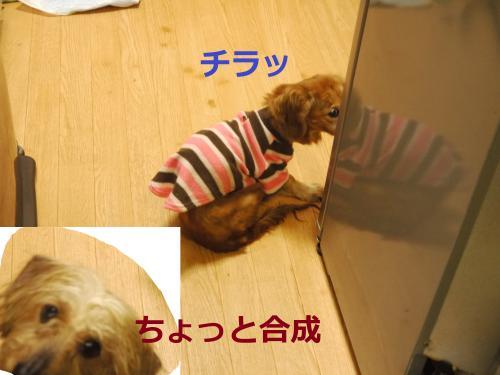 023+-+繧ウ繝斐・_convert_20120222184940