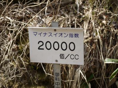 265_convert_20110506150835.jpg