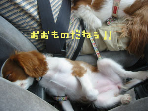 yufuin84.jpg