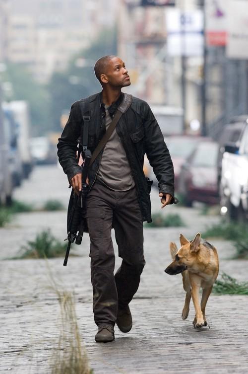 元大都会に犬と暮らす男
