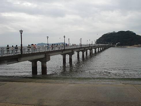 jynbogasawa