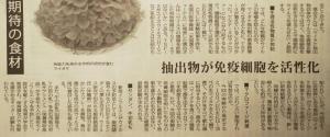 a舞茸記事・下