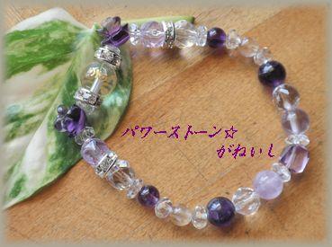 10紫斜葉