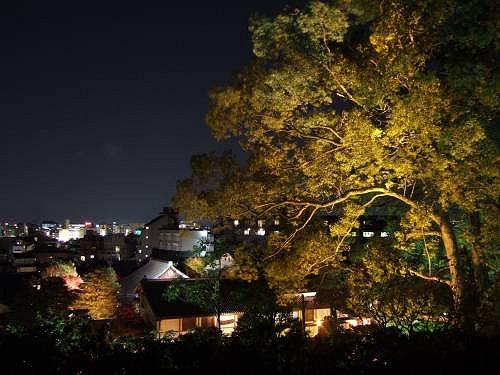 高台寺の階段(台所坂)方向の夜景