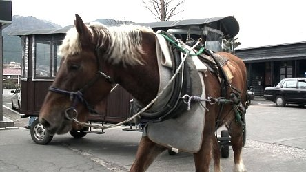 由布院駅前で見かけた馬車