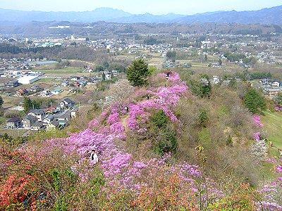 瑞巌寺の岩つつじ