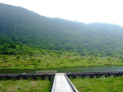 覚満渕の北岸にはレンゲツツジが咲く。背後は駒ヶ岳