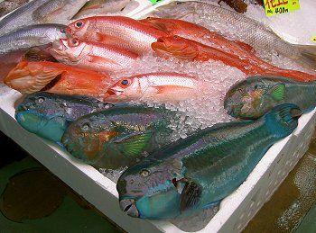 市場で売られているカラフルな魚たち