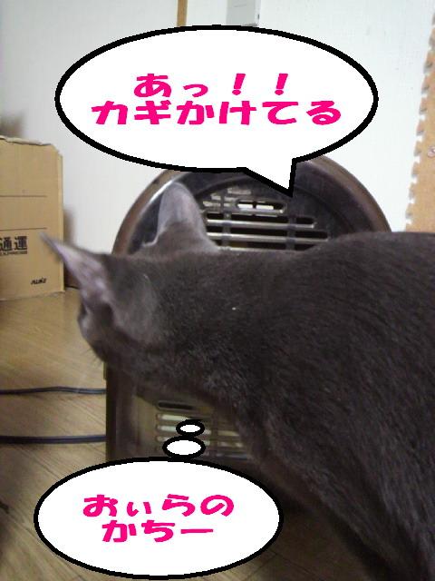 けちな兄貴3