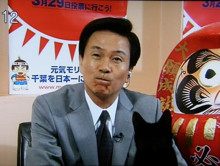 当選した森田健作を見る桜子