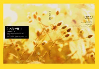 deepblack4-tenshinotane-cc.jpg