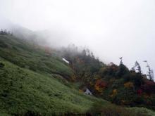 山頂から三ツ池付近