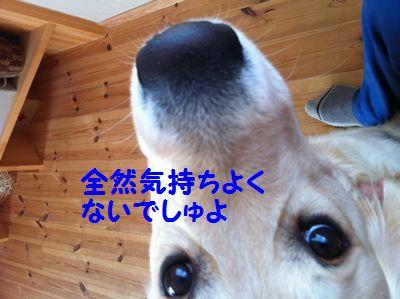 20110227_07_R.jpg