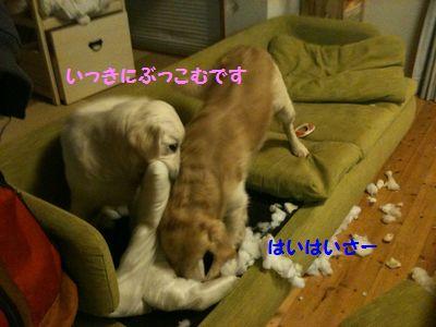 20110328_04.jpg