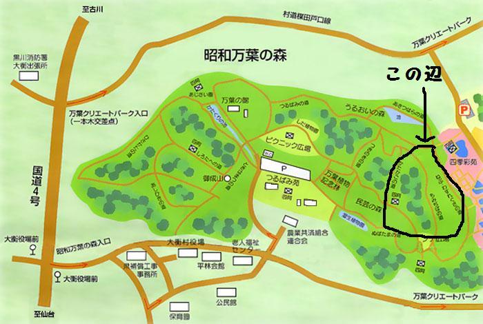 万葉の森 MAP-2