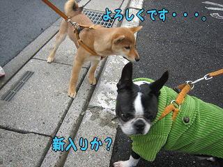 20060413001057.jpg