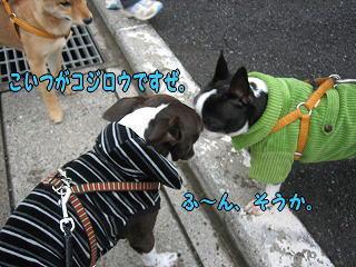20060413001108.jpg