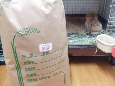 25.米袋と米子