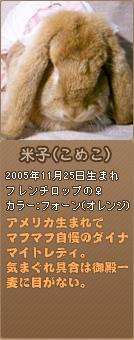 フレンチロップ-米子
