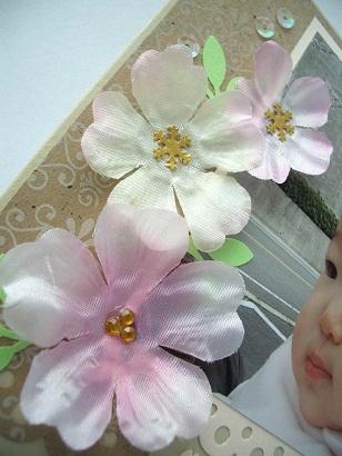 2011_0510_124140-CIMG1220.jpg
