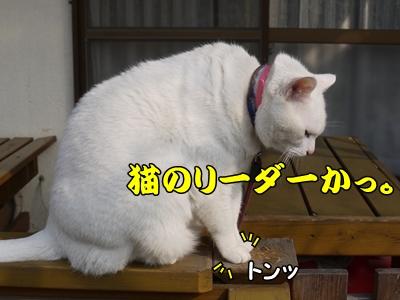 1リーダー16