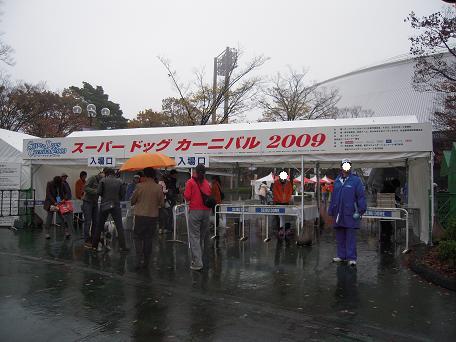 ☆☆☆ 2009.11.14 スーパードッグカーニバル ☆☆☆