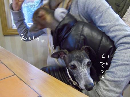 こうなりゃ力技ッ!!!