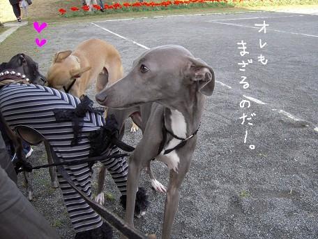 おやつ食べたら遊ぶのだーーー!!