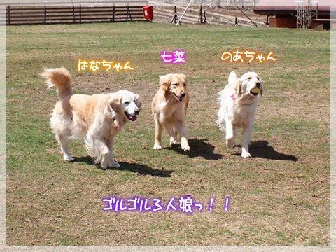 Hana-Noa-chan and Nana