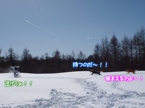 P3052386.jpg