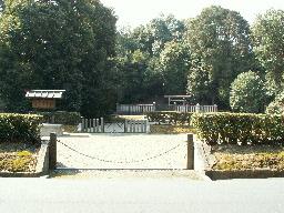 003-01.jpg