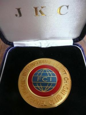 メダル2月9日