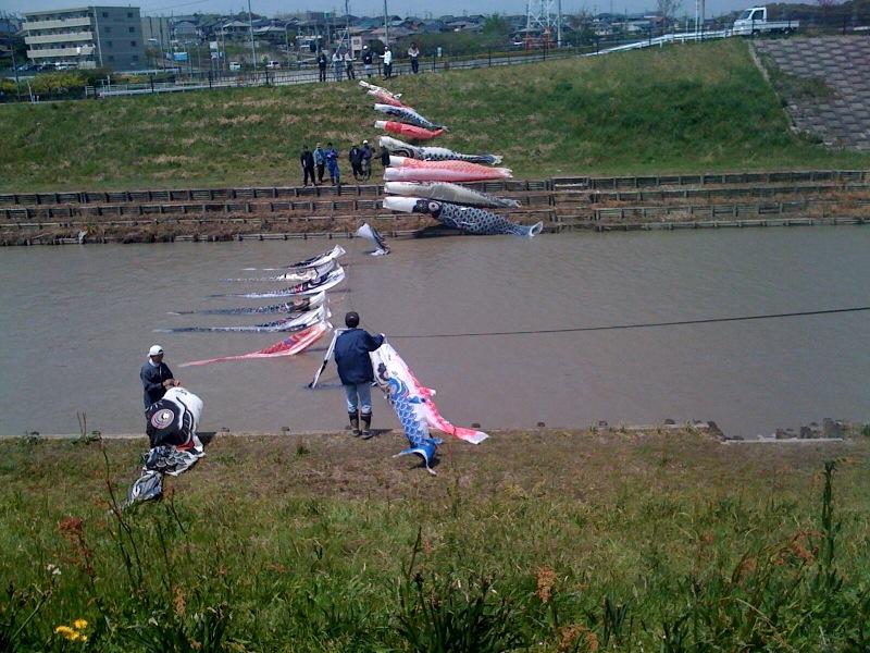 20110424 鯉のぼり2
