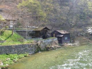 朝の菊水館(2)