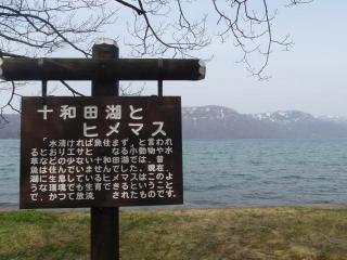 朝の十和田湖(2)