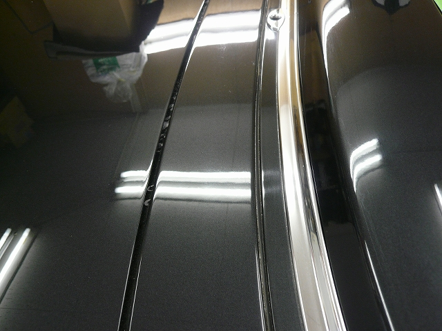 P1180091-347.jpg