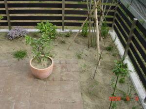 2009_05_03_08.jpg