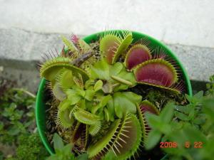 2009_05_23_03.jpg
