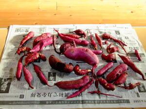 2009_11_01_11.jpg