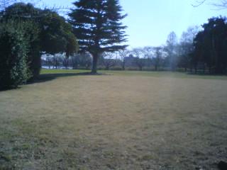 水城公園芝生広場