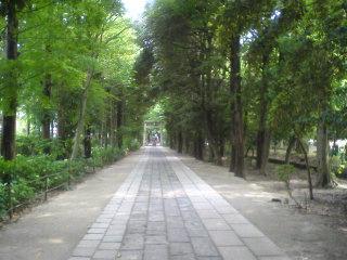 20090601009.jpg