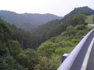 20090802006.jpg
