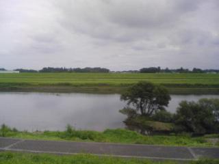 20090902001.jpg